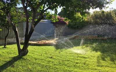 2020 Watering Days & Exemptions
