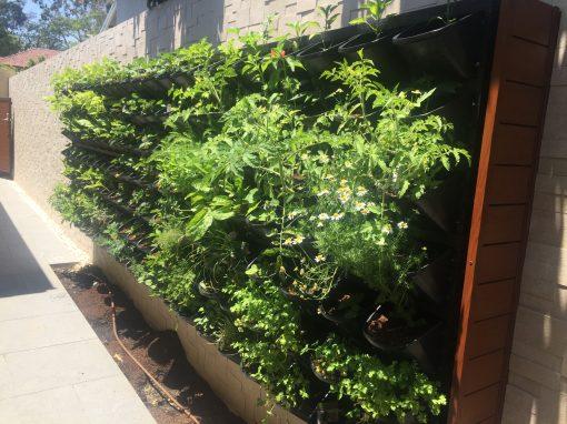 Residential Vertical Herb Garden