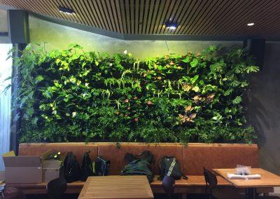 The Globe Perth Bar & Restaurant