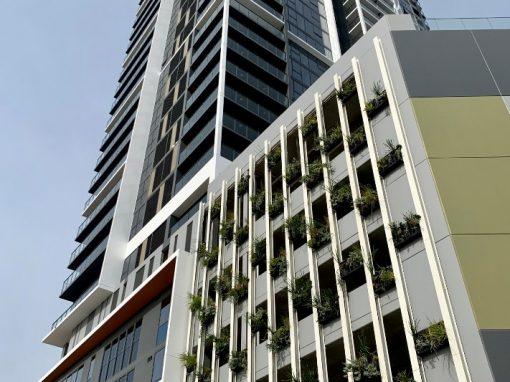 Sabina's Vertical Living Wall