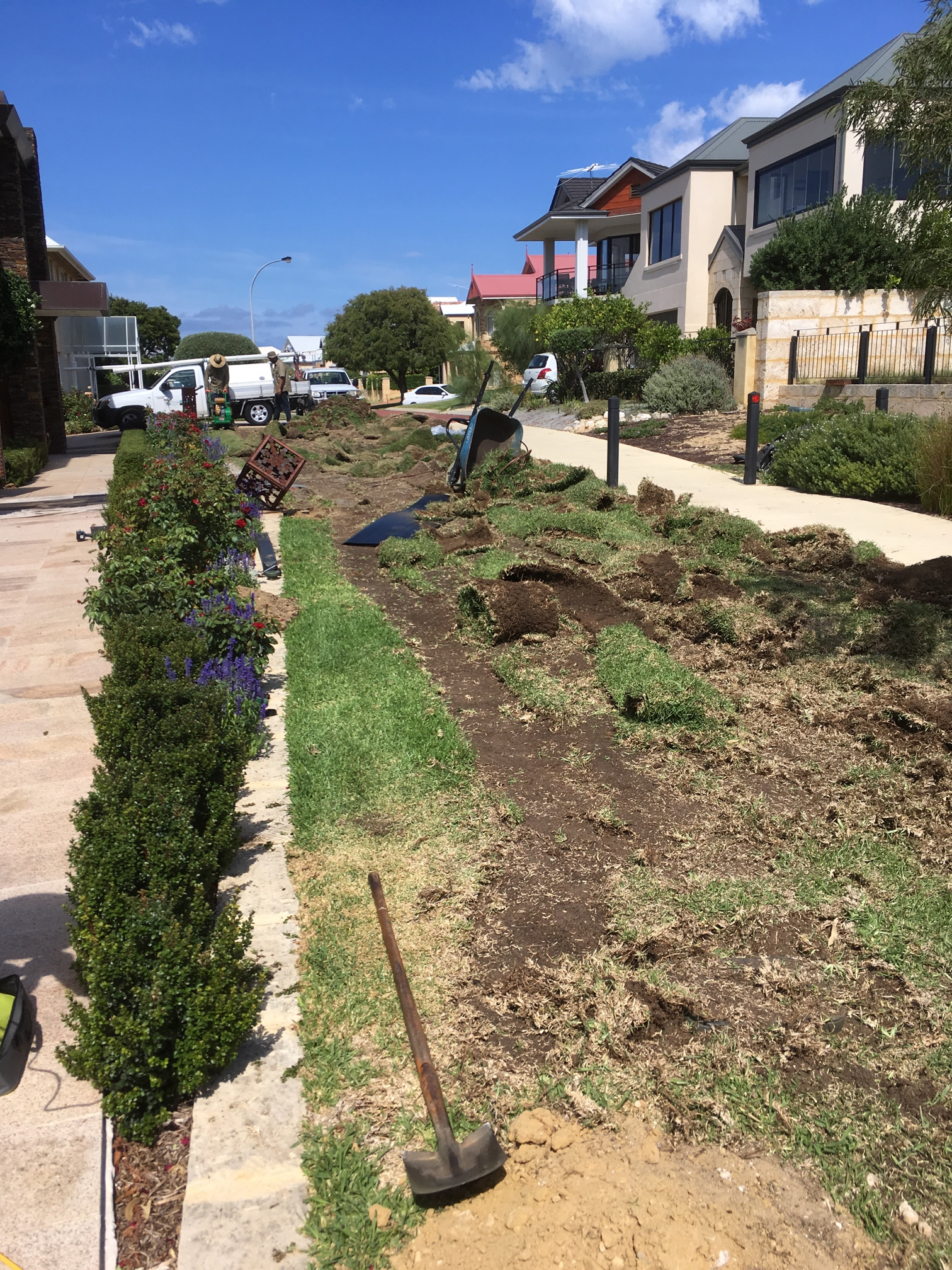 North Fremantle Grass removal