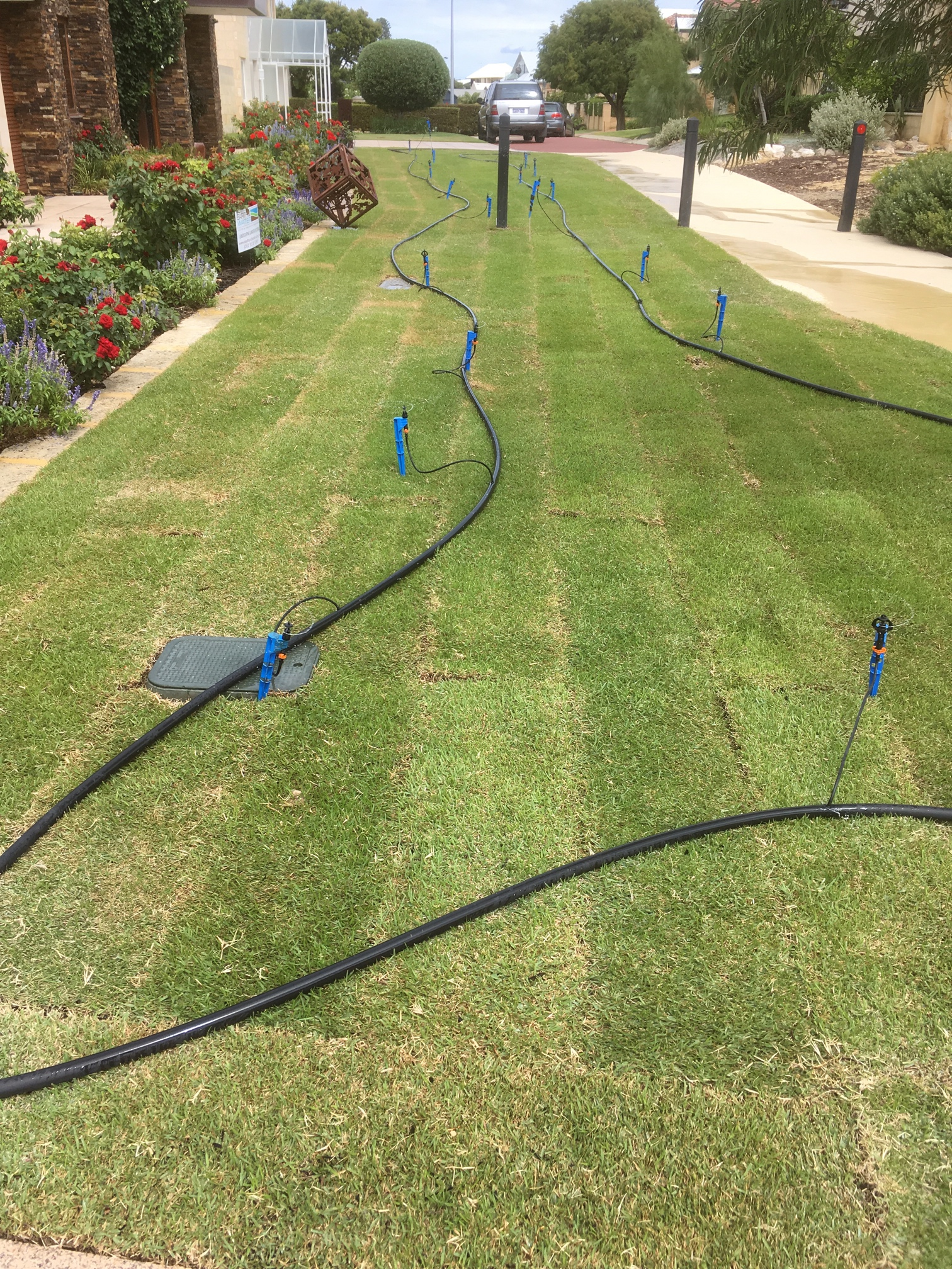 Temporary Sprinklers in North Fremantle