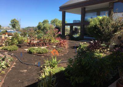 North Fremantle: Water Treatment & Garden Revitalisation